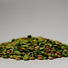 Green Lentils by stephen proctor