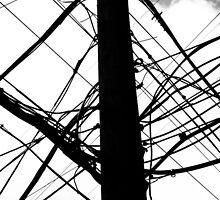 Wire Crazy by Byran  Hoyt