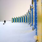Beach Huts In The Snow by Leon Ritchie