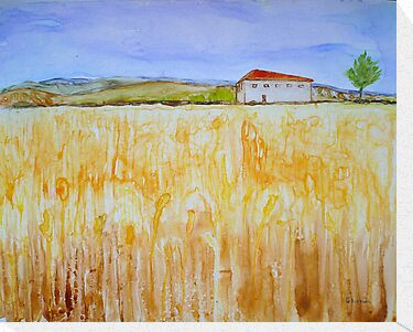 Wheat Fields by Sandrine Pelissier