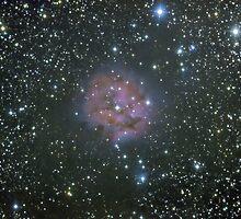 Cocoon Nebula by jms9