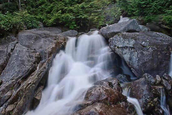 Small Waterfall at Chief Trailhead by Michael Garson