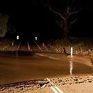 Floodway, Wilpena Road, South Australia by Neville Jones