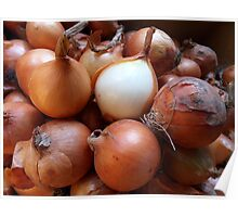 Brown onion Poster