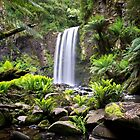 Chasing Waterfalls by primovista