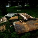 Strewn (St. John&#x27;s Cemetery Series) by Leanna Lomanski