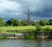 Salisbury Cathedral, from the Water Meadows by hootonles