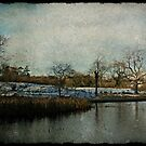 Vintage Winter in Ireland by Julesrules