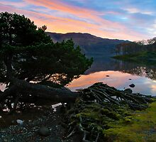 Derwent water sunrise by Shaun Whiteman