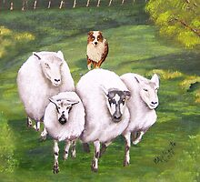 4 sheep and a dog greeting card by Barbara Applegate