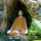 Buddha statue under root. by Amanda Gazidis