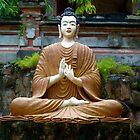 Buddha in orange robe. by Amanda Gazidis