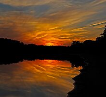 Fiery Night II by Paul Gitto