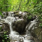 Mexican Jungle Waterfall by ChrisJecs