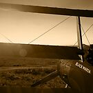 Sopwith Triplane by 3dHistory