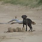 Puppies and Sandcastles  by creativegenious