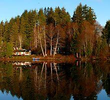 Silent Reflections by Gail Bridger