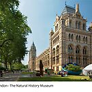 UK - London's Natural History Museum by macondo