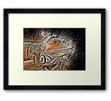 reptiles Framed Print