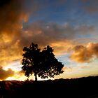 I have Found You... Kauai Sensual Series by linaji