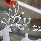 Merry Christmas by Indrani Ghose