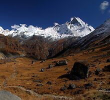 Machhupuchhre, Nepal. by Andy Newman