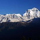 Dhauligiri Himal, Nepal. by Andy Newman