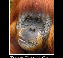 ZooTips: Think Things Over by Angie Dixon