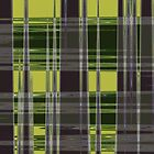 Light Green Plaid by Helen Shippey