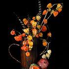 Autumn Still-Life by 1bluecanoe