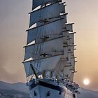 Royal Clipper  by Nancy Richard