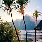 Mitre Peak, Milford Sound by apple88