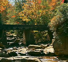 Glade Creek Trestle Bridge - Babcock State Park by Colleen Jarrell