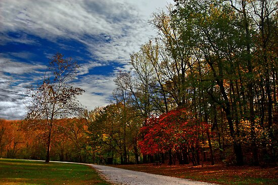 This Way to Autumn by Lisa G. Putman
