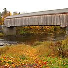 Low's Covered Bridge by Paul Harrison
