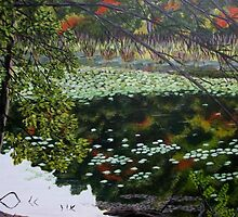 Bakers Meadow by Gary Adams