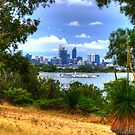Perth through the trees by BigAndRed