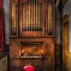 Organist - What a big organ you have  by Mike  Savad