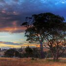 Tungkillo Sunset - Tungkillo, South Australia by Mark Richards