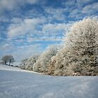 Winter Wonderland by John Keates
