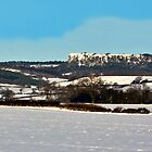 Roulston Scar by Trevor Kersley