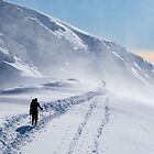 Scottish Alps - The Col below Aonach Beag by toonartist