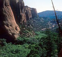 Tsegi Canyon, Navajo National Monument, Arizona by nealbarnett