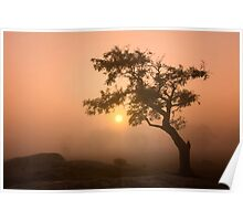 Sunrise at Dog Rocks Poster