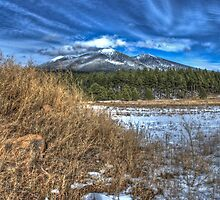 San Fransisco Peaks by Freese