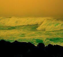 Mendocino Coast, N. California, #N31 by Ascender Photography