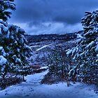 Appalachian Winter by Ann Eldridge