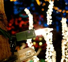 twinkle, twinkle by andygirl