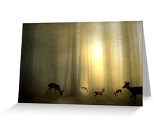 The Magic Of Sunrise Greeting Card