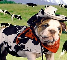 """Cow Dog"" - An English Bulldog wants to be a Cow Dog. by John Hartung"